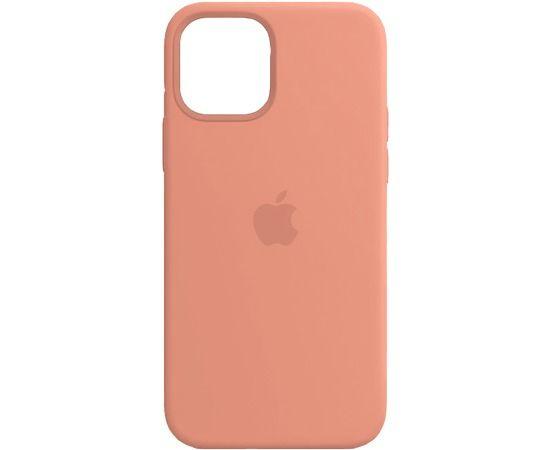 Чехол iPhone 12/12 Pro Silicone Case Pink Sand